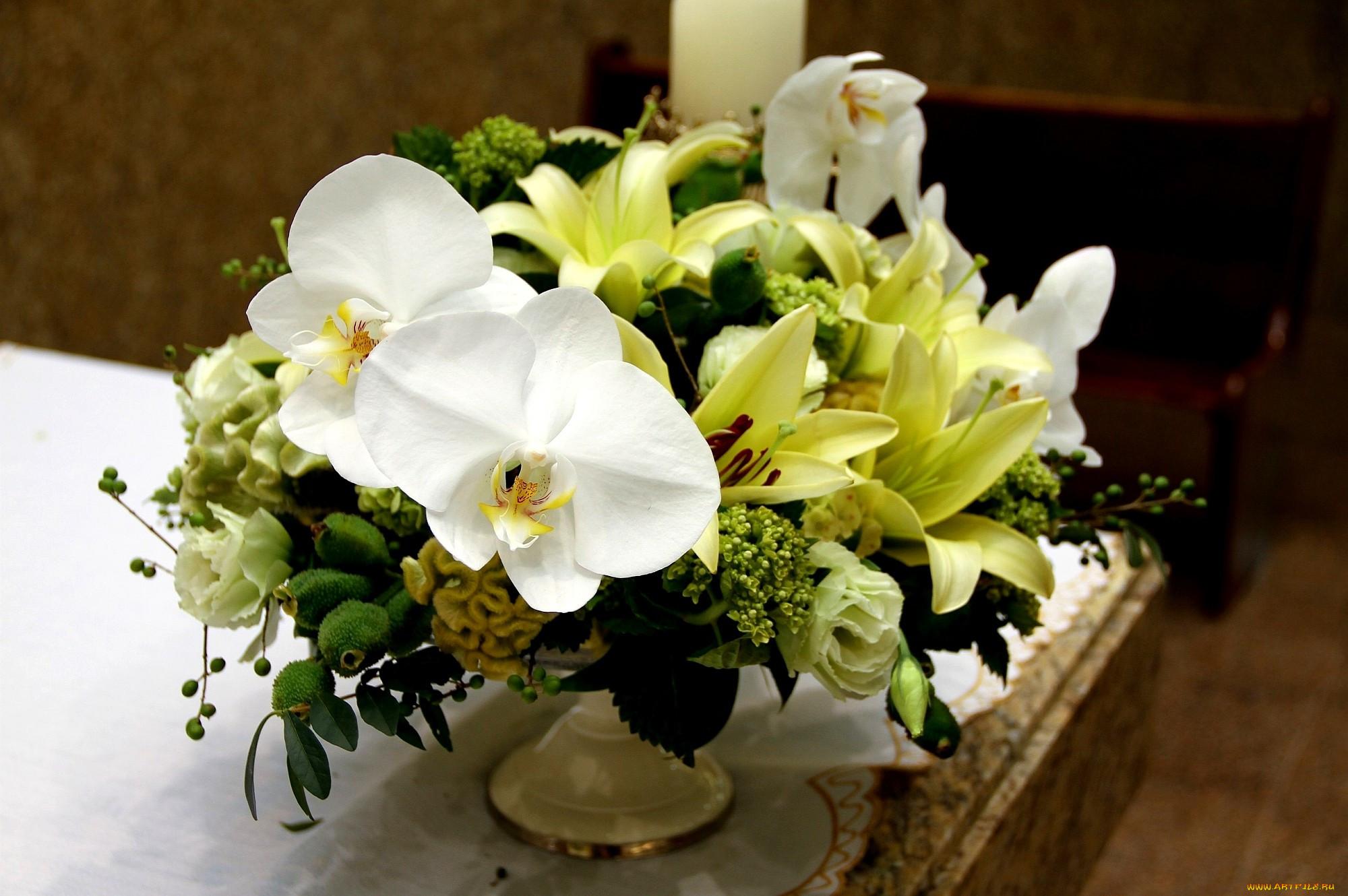 камеру фотографии лилий и орхидей все них прошли